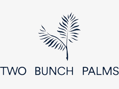 Two Bunch Palms