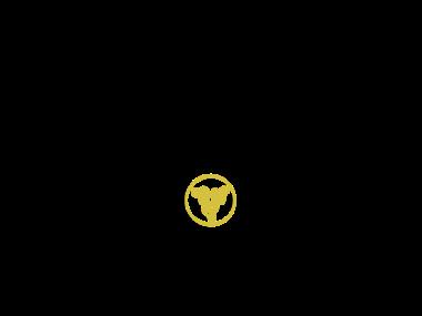 The Peninsula Group 380×285