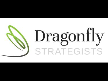 Dragonfly-Strategists-Logo 380×285